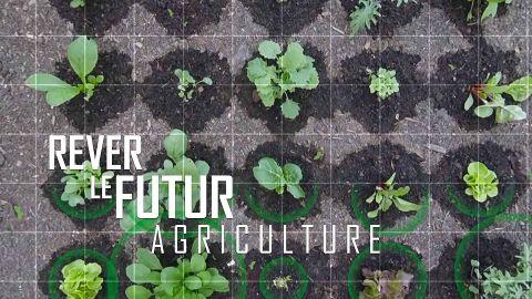 Rêver le futur : Agriculture